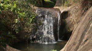 aruvikuzhy_waterfalls_pathanamthitta20140104090717_551_1