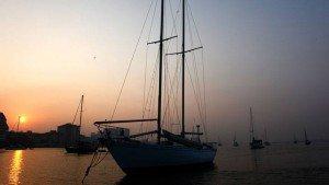 bolghatty_island20131105170200_180_1