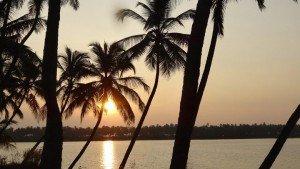kavvayi_backwater_at_payyanur20150811063720_376_1