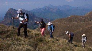 trekking_at_eravikulam_national_park20140516100022_319_1